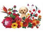 子犬 パピー 幼犬用品専門店 ケリー(コイヌパピーヨウケンヨウヒンセンモンテンケリー)のロゴ画像